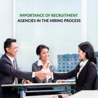 Best Job Consultancy in Haldwani  Panorama India Consultancy
